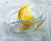 JLongo_splash_224_sml
