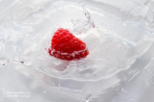 JLongo_splash_23_web