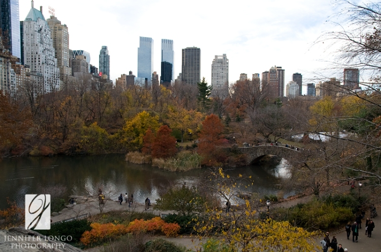 View of Central Park - NYC